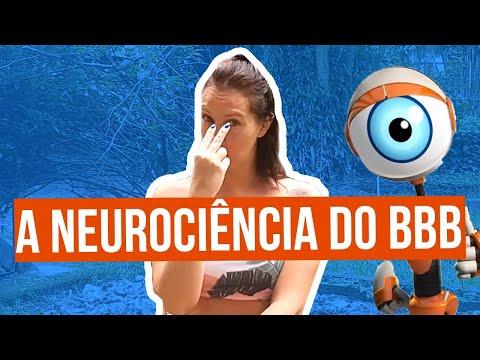 A Neurociência do BBB
