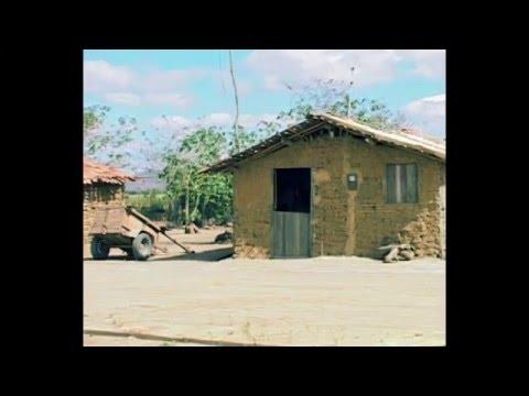 o trabalho em Taquarana-AL (Projeto Rondon)