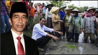 Video Dijelek-jelekkan Di Indonesia, 5 Negara Ini Cinta Mati dengan Presiden Jokowi MP3, 3GP, MP4, WEBM, AVI, FLV Februari 2019