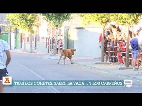 Encierro de la Vaca del Aguardiente en Carpio de Tajo