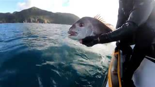 8. 10 degrees winter fishing on the Sea-Doo FISH PRO with Andrew Hill in New Zealand