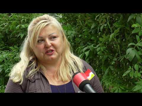 TVS: Uherské Hradiště 11. 8. 2017