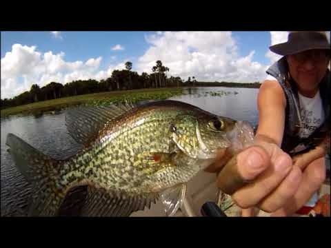 Catching a mess o' Crappie.