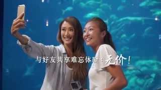 MasterCard #PricelessHongKong:谢婷婷与鲨鱼的水底约会 Jennifer Tse's Underwater Date with Sharks