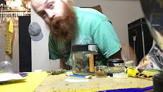 Late Night Smoke Sesh by Phat Robs Oils