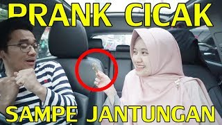 Video PRANK PACAR : KADO ISI CICAK SAMPE MAU NANGIS ! MP3, 3GP, MP4, WEBM, AVI, FLV Januari 2019