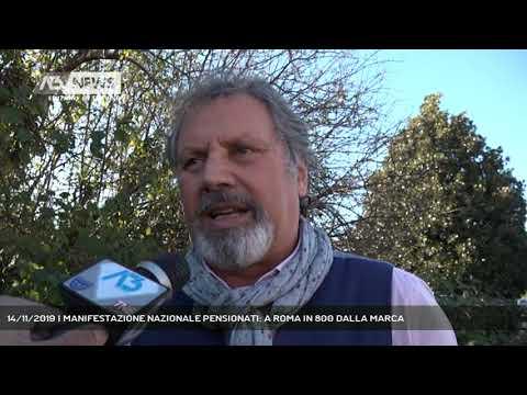 14/11/2019 | MANIFESTAZIONE NAZIONALE PENSIONATI: A ROMA IN 800 DALLA MARCA
