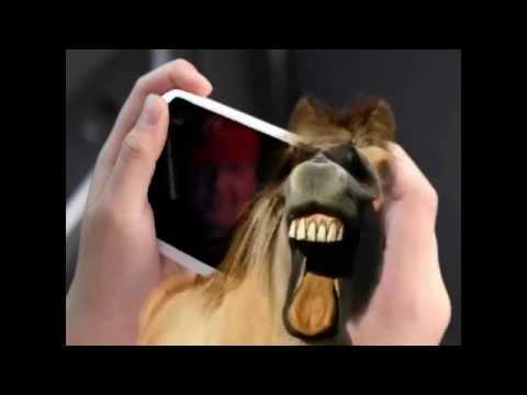 И спёр, паразит, мой iPhone...