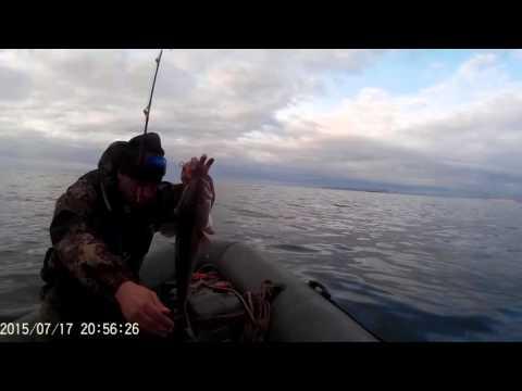 рыбалка на московском море сейчас