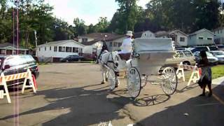 West Middlesex (PA) United States  city photos : Horse Drawn Carriages - Victorian Carriage 28e -- Carriage Limousine Service