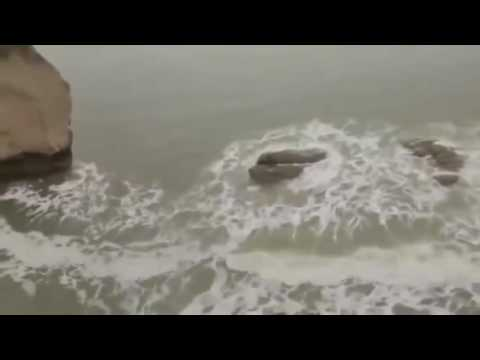 Video انها حقيقة وليست مزحة تم تصوير حورية البحر حقيقية !!! Mermaid rea 2014 download in MP3, 3GP, MP4, WEBM, AVI, FLV January 2017