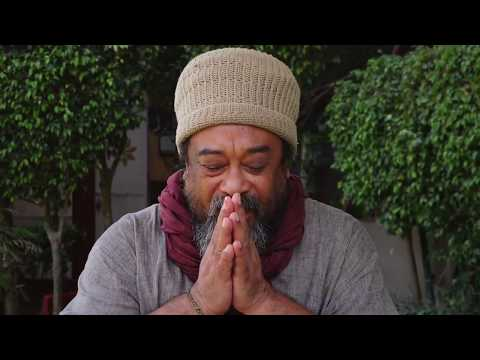 Mooji Video: Once The Truth Is Seen, It's Time for Assimilation
