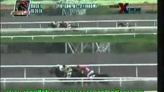 PHILIPPINE JOCKEY CLUB - SANTA ANA PARK 2011/2012 RACE 1