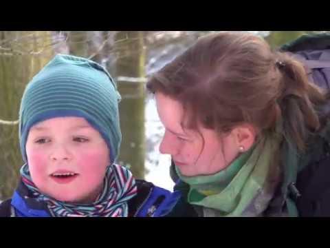 Norddeutsch und nachhaltig: Erlebnis am Bungsberg