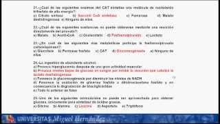 Umh1003 Bioquímica, Metabolismo Y Nutrición. Examen Febrero Curso 2012-13