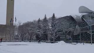 Edmonton (AB) Canada  City pictures : Snow in Edmonton Alberta Canada autumn of 2016