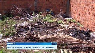 Multa para proprietários que não limpam os terrenos fica mais cara em Marília