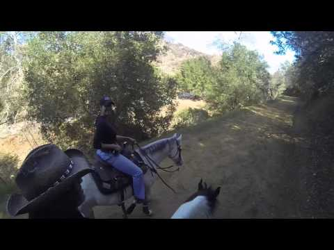 Horseback Riding in the Hills of Griffith Park