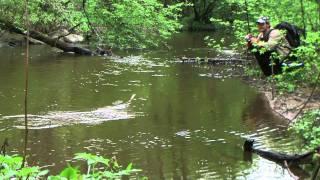 Весенняя рыбалка на живописной речке.Fishing On Spring Creek