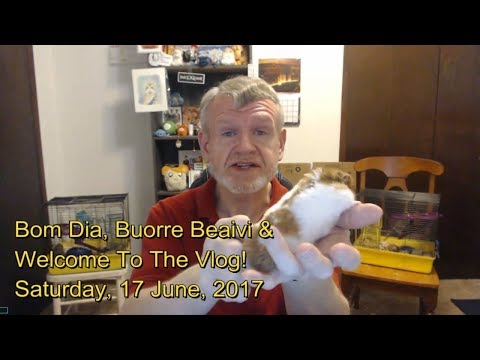 Bom Dia, Buorre Beaivi & Welcome To The Vlog! Saturday, 17 June, 2017