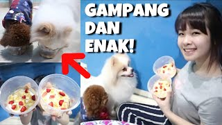 Video Salad Buah TERMUDAH dan AMAN buat ANJING MP3, 3GP, MP4, WEBM, AVI, FLV November 2018