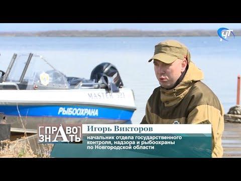 Рыбоохранный рейд на реке Больная Ниша в Новгородской области