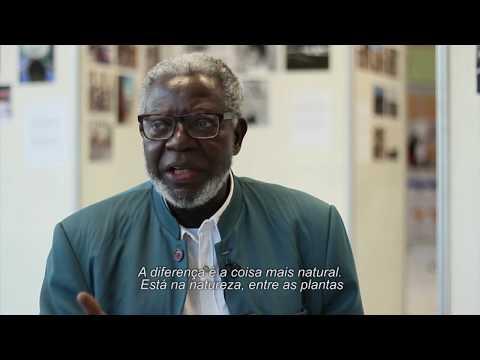 Revolução Silenciosa: 10 Anos de Cotas Raciais na UFSC