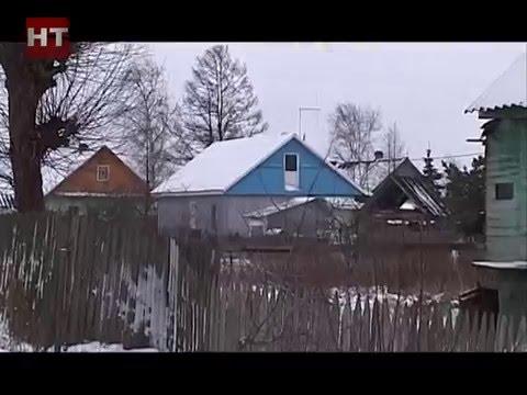 В Новгородской области вновь объявлено штормовое предупреждение