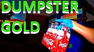 Video Dumpster Diving Jack Pot We Scored Big From Illegal Dumping MP3, 3GP, MP4, WEBM, AVI, FLV Juli 2019