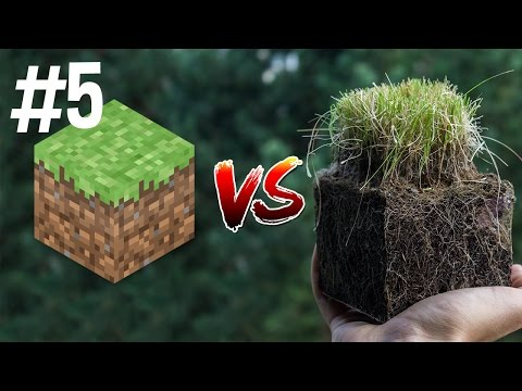 gratis download video - Minecraft-vs-Real-Life-5