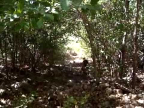Levantamento Trilha Castelo do Piauí.avi