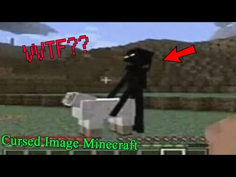 Những Hình Ảnh Kinh Dị Đáng Suy Ngẫm Trong Minecraft !! (Cursed Images Minecraft) - Thời lượng: 4 phút, 15 giây.