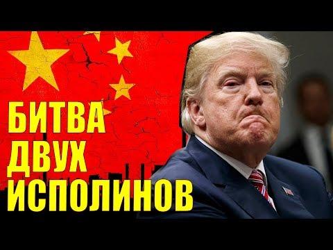 Как России выиграть в войне США и Китая - DomaVideo.Ru