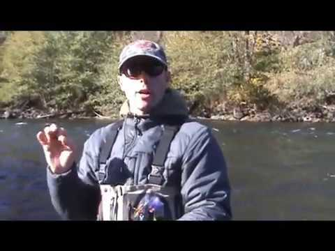 Swinging Steelhead Flies – Fly Fishing Steelhead for Beginners – Part 2