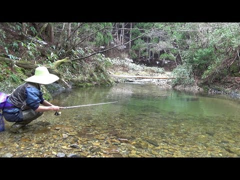 Japanese Mountain Stream Lure Fishing - Thời lượng: 7:06.