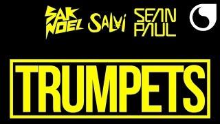 Sak Noel & Salvi Ft. Sean Paul - Trumpets (Extended Mix) Video