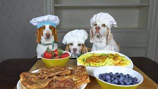 Dogs Cook Breakfast: Tasty Breakfast Ideas w/Funny Dogs Maymo, Penny & Potpie by Maymo