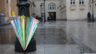 The Umbrella That Tells You When It Will Rain