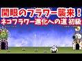 ネコフラワー進化への道 初級 スペシャルステージ 開眼のフラワー襲来 !【stage.1 / 1】にゃんこ大戦争 !