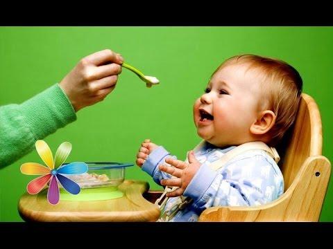 5 ошибок введения прикорма