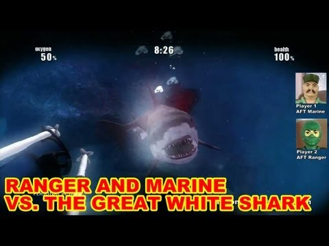 How To Fight A Great White Shark