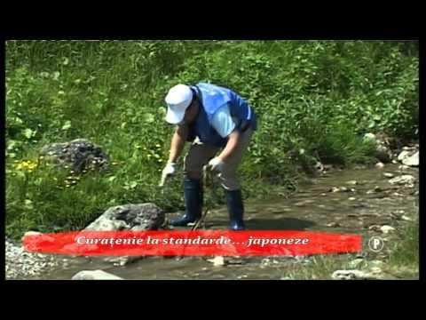 Curatenie la standarde… japoneze