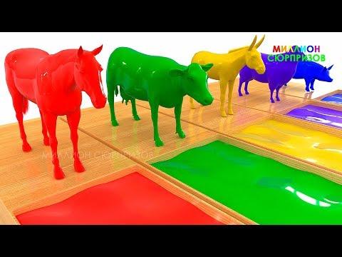 Животные для детей | Учим Домашних Животных | 3Д Анимация | Учим Цвета с 3Д Животными для малышей