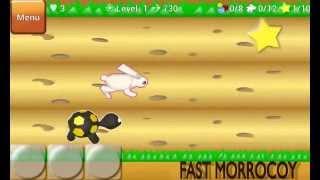 Fast Morrocoy (Runner) YouTube video