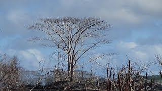 Video Hawaii ATV in disaster zone fissure 8 Leilani Estates after the Kilauea eruption MP3, 3GP, MP4, WEBM, AVI, FLV September 2018