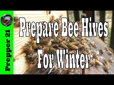 Prepare Honey Bee Hives For Winter