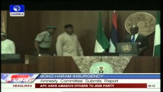 Amnesty committee submits report on Boko Haram