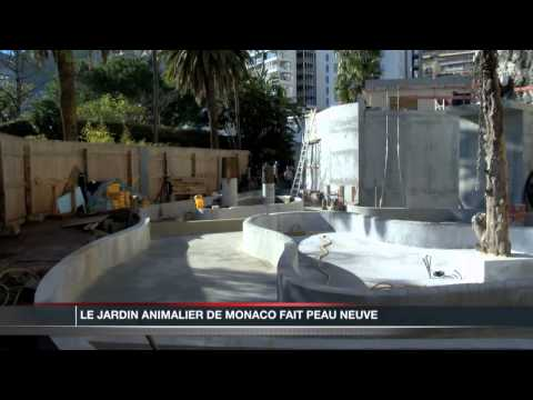 Video monaco channel cha ne monaco info la demande for Jardin animalier monaco