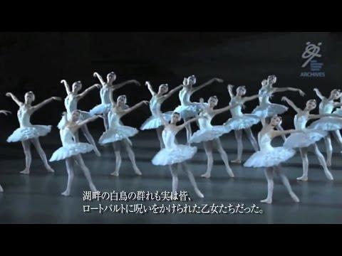 新国立劇場バレエ団 3分でわかる!白鳥の湖