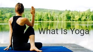 Sir Bashir lecture on What is yoga